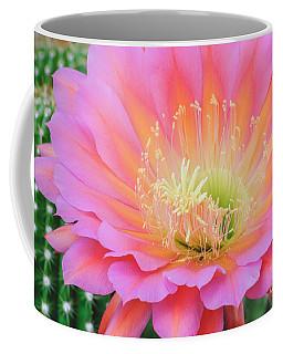 Pink Saucer Coffee Mug by Tamara Becker