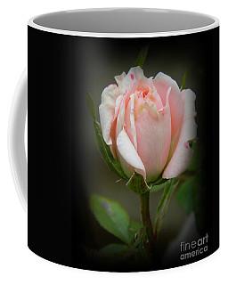 Pink Tea Rose Coffee Mug