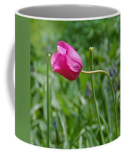 Pink Tulip Coffee Mug by Aimee L Maher Photography and Art Visit ALMGallerydotcom