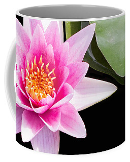 Coffee Mug featuring the photograph Pink Water Lily And Pad by Rebecca Cozart