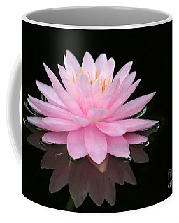 Pink Water Lily In A Dark Pond Coffee Mug
