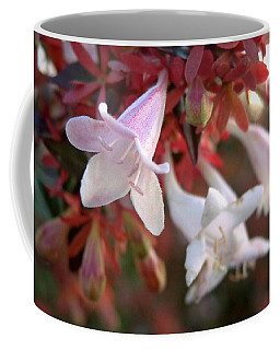 Pinks Coffee Mug