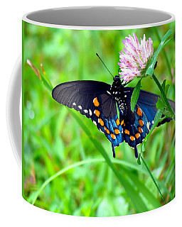 Pipevine Swallowtail Hanging On Coffee Mug