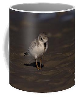 Piping Plover Photo Coffee Mug