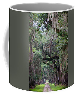 Plantation Path Coffee Mug