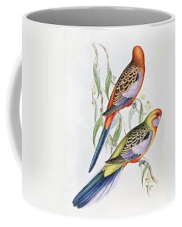 Platycercus Adelaidae From The Birds Of Australia Coffee Mug