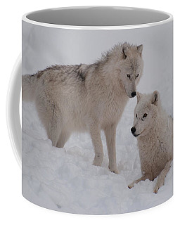 Coffee Mug featuring the photograph Play Time by Bianca Nadeau