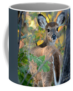 Playful Fawn Toddler Coffee Mug