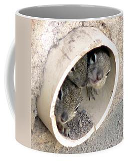 Playing In A Pipe Coffee Mug