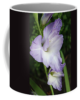 Coffee Mug featuring the photograph Pleasure To The Eye by Bruce Bley