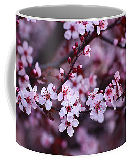 Coffee Mug featuring the photograph Plum Blossoms by Lynn Hopwood