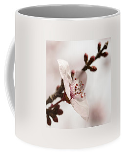 Plum Pink Coffee Mug by Caitlyn  Grasso