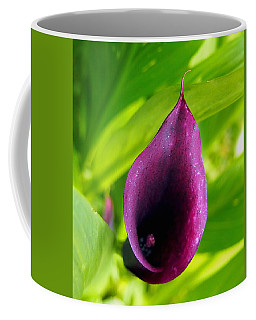 Plum Purple Calla Lilly Flower In The Garden Coffee Mug