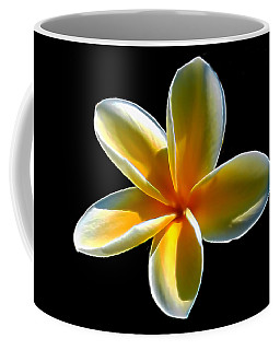 Plumeria Against Black Coffee Mug