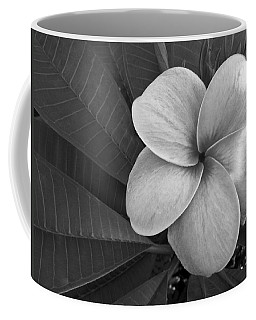 Plumeria With Raindrops Coffee Mug