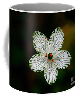 Coffee Mug featuring the photograph Pocosin Manifest by Paul Rebmann