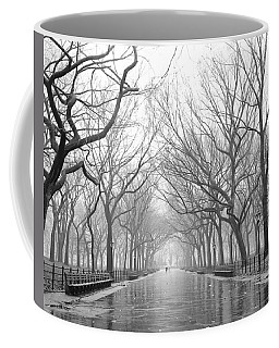 Coffee Mug featuring the photograph New York City - Poets Walk Central Park by Dave Beckerman