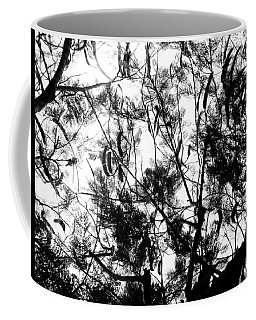 Coffee Mug featuring the photograph Poinciana Lace by Amar Sheow