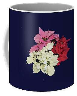 Poinsettia Tricolor II Coffee Mug