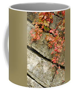 Coffee Mug featuring the photograph Poison Ivy by Mary Carol Story