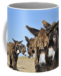 Coffee Mug featuring the photograph Poitou Donkey 3 by Arterra Picture Library