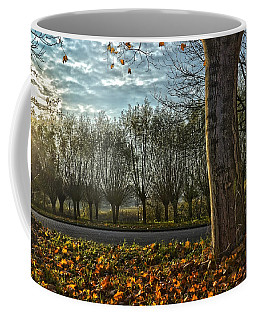 Pollard Willows In Rotterdam Coffee Mug