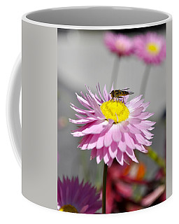 Coffee Mug featuring the photograph Pollination by Cathy Mahnke