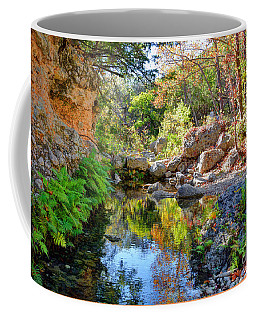 Pond At Lost Maples Coffee Mug