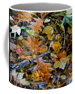 Pond Of Color Coffee Mug by Marcia Lee Jones