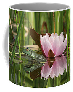 Pond Reflections Coffee Mug by Judy Whitton