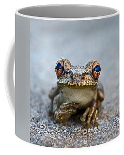 Pondering Frog Coffee Mug
