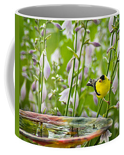Poolside Perch Coffee Mug