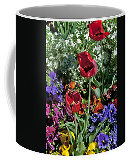 Coffee Mug featuring the photograph Poppies by Mae Wertz