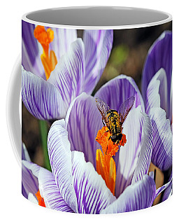 Coffee Mug featuring the photograph Popping Spring Crocus by Debbie Oppermann