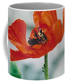Poppy - 1 Coffee Mug