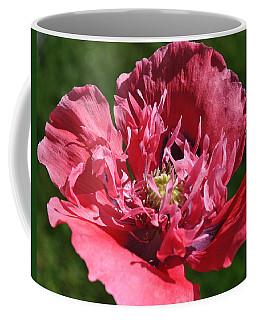 Poppy Pink Coffee Mug by Jim Hogg