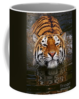 Coffee Mug featuring the photograph Portrait Of A Bathing Siberian Tiger by Nick  Biemans
