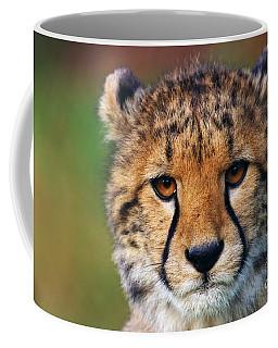 Coffee Mug featuring the photograph Portrait Of A Cheetah Cub by Nick  Biemans