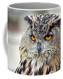 Coffee Mug featuring the photograph Portrait Of A Great Horned Owl II by Jim Fitzpatrick
