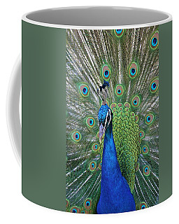 Coffee Mug featuring the photograph Portrait Of A Peacock by Diane Alexander