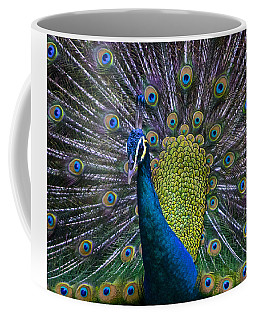 Portrait Of A Peacock Coffee Mug by Venetia Featherstone-Witty