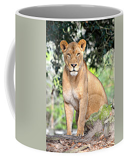 Portrait Of A Proud Lioness Coffee Mug