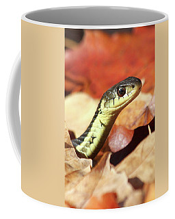 Coffee Mug featuring the photograph Portrait Of A Snake by Doris Potter