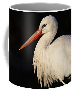 Coffee Mug featuring the photograph Portrait Of A Stork With A Dark Background by Nick  Biemans