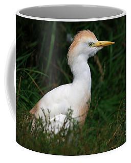 Portrait Of A White Egret Coffee Mug