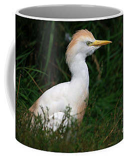 Coffee Mug featuring the photograph Portrait Of A White Egret by Nick  Biemans