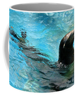 Coffee Mug featuring the photograph Posing Sea Lion by Kristine Merc