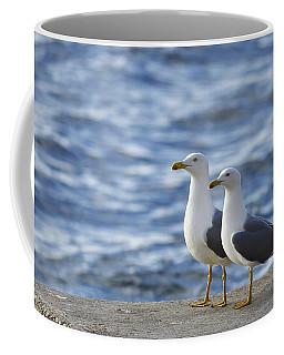 Posing Seagulls Coffee Mug