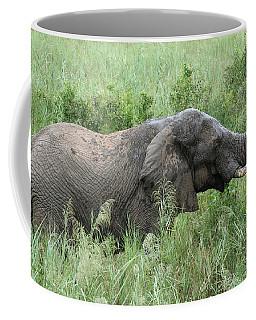 Post Mud Bath Appetite Coffee Mug