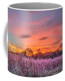 Moraine Hills State Park Moments Before Sunrise Coffee Mug